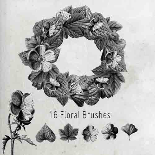 16-floral-brushes-jpg.464
