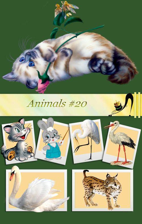 animals-20-jpg.7429