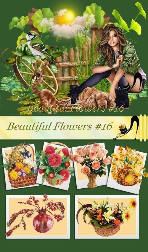 Beautiful Flowers #16.jpg