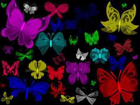 butterflies-jpg.43