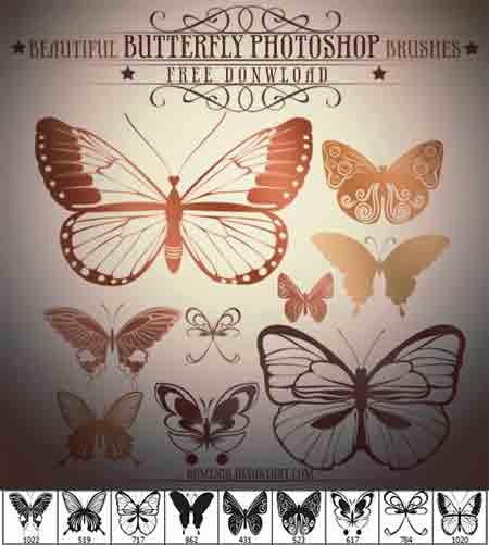 butterfly3-jpg.1200