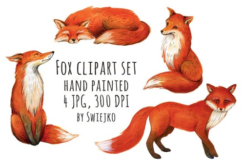 Fox-illustration,-clipart.jpg