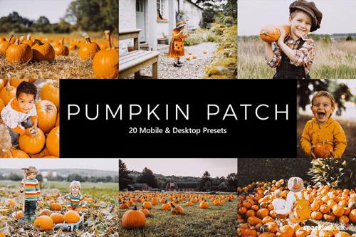 pumpkin-patch-jpg.36864