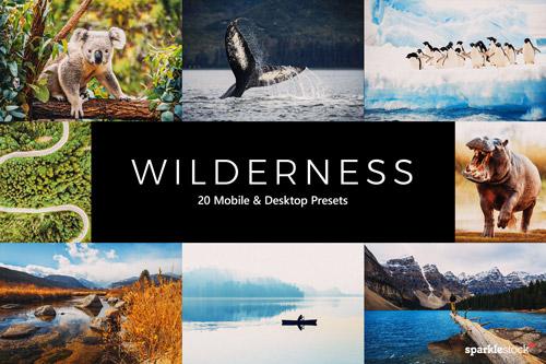 wilderness-jpg.36874